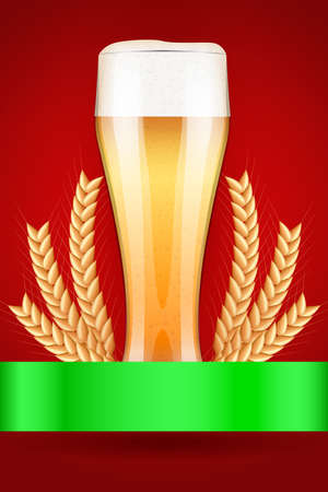 malt: Octoberfest celebration beer poster. Glass with light beer and grain malt. Poster and background.  Illustration.