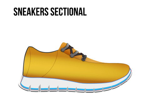 wetness: Technical illustration of sport shoes sneakers sectional.