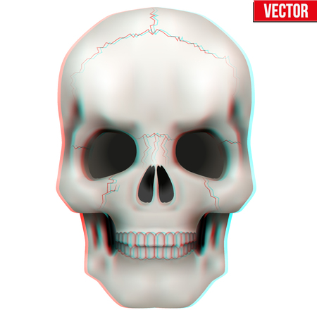 anaglyph: Vector Human skull with visual Anaglyph stereoscopic effect. Vector Illustration Isolated on White Background