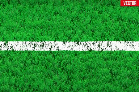 grass area: White line on grass field. Closeup For various sport background. Editable Vector illustration Isolated on background.