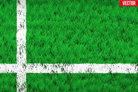 grass area: White lines on grass field. Closeup For various sport background. Editable Vector illustration Isolated on background.