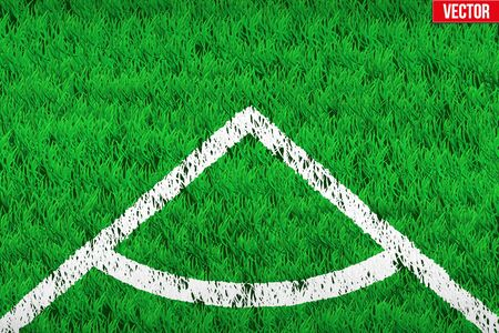 grass area: White angular lines on grass field. Closeup For various sport background. Editable Vector illustration Isolated on background.