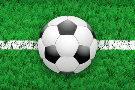 grass area: White line and soccer football ball on grass field. Closeup sport background. Editable illustration Isolated on background.