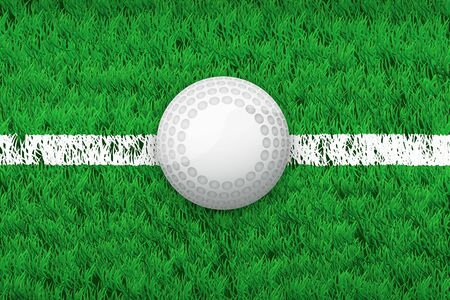hockey cesped: línea blanca y la bola de hockey en campo de hierba. Primer plano de fondo el deporte. Editable ilustración vectorial aislados en el fondo.