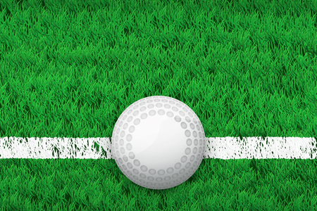 grass area: White line and hockey ball on grass field. Closeup sport background. Editable Vector illustration Isolated on background.