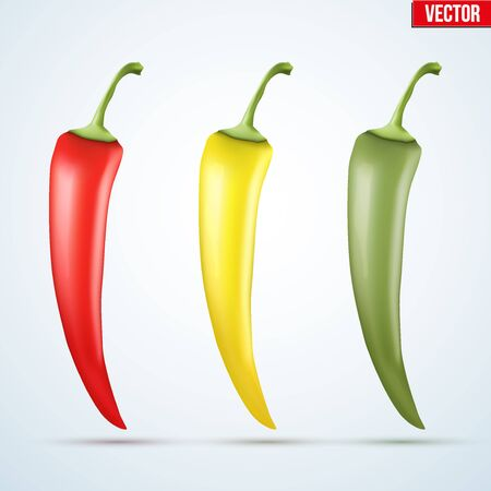 capsaicin: Set of chili peppers. Spicy red and yellow and green color. Vector Illustration isolated on white background. Illustration