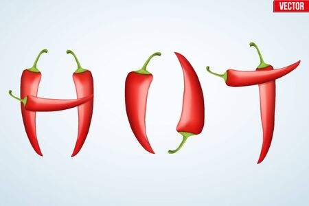 chili sauce: Word HOT decorated with red pepper. Spicy menu. Vector Illustration isolated on white background.