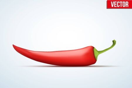capsaicin: Classic red chili peppers. Spicy menu. Vector Illustration isolated on white background.