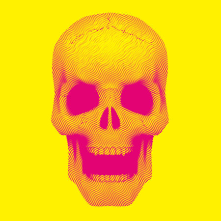 Human skull in vintage duotone and halftone sketch style. Vector Illustration isolated on background.