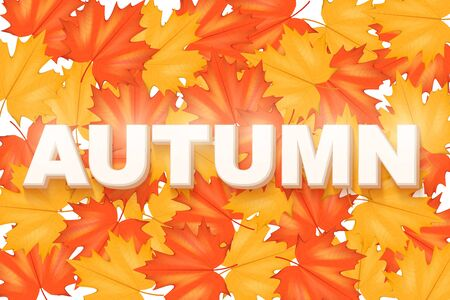 horizontal format: Red and Yellow Leaves Pattern with word Autumn. Horizontal format. Vector Illustration isolated on white background.
