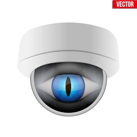 nightvision: CCTV security camera with reptile eye. Technologies for monitoring and protection of territory. Vector Illustration isolated on white background. Illustration