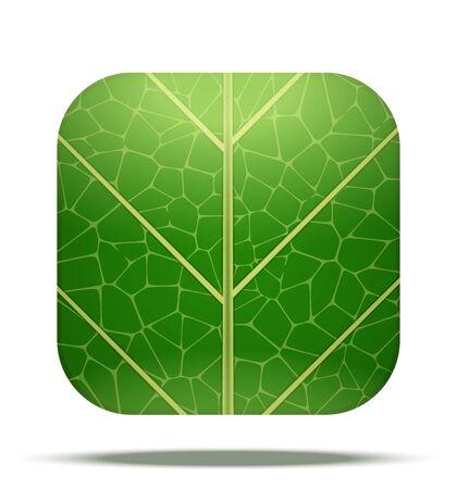 vegetate: Leaf Square Icon Stock Photo