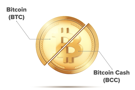 Concept Illustration of Cryptocurrency Bitcoin divided into Bitcoin and Bitcoin Cash. Vector Illustration isolated on white background.