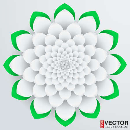 Background beautiful paper flower. Vector illustration, EPS10, editable and isolation