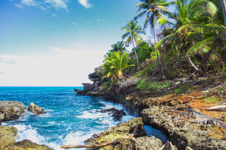 Wild tropical rocky shore, bay, lagoon. Green palm trees on the rocks and girl on the rocks. Las Galeras, Samana, Dominican Republik