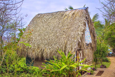 Traditional bure with thatched roof.  Dominican republic