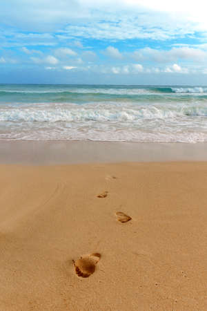 lonely footprints in the sand going from the sea. vacation concept,