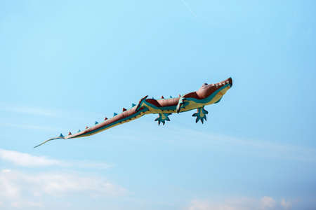 air crocodile kite flying high in the sky. Kite festival. Family holiday. Kite competition