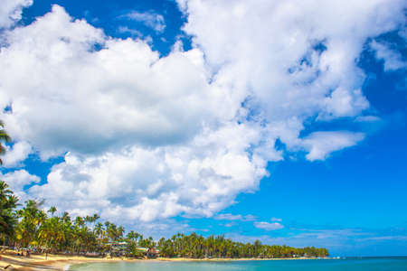 Ideal vacation. Perfect beach in Dominican Republic. Blue sea, hight palm trees and blue sky