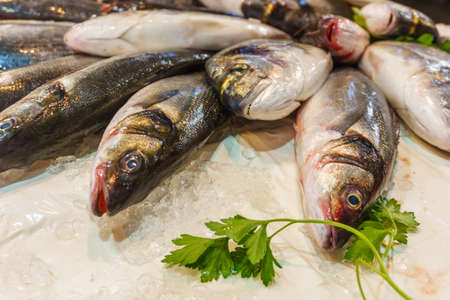 selling of fresh fish,  fish on ice with parsley on the counter close up. Gastronomic tourism, see food