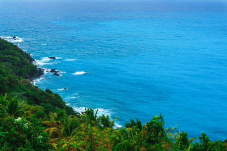 enchanting natural wild landscape with rocky mountains overgrown dense green jungle tree, palm and clear azure water of sea ocean. Dominican Republic Stock Photo