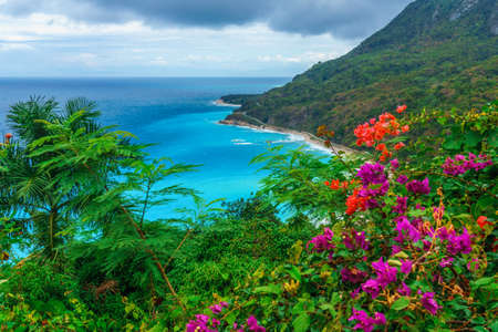 adorable natural wild landscape with rocky mountains overgrown dense green jungle tree, palm and clear azure water of sea ocean. Dominican Republic