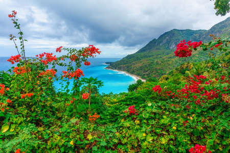 Scenic natural wild landscape with rocky mountains overgrown dense green jungle tree, palm and clear azure water of sea ocean. Dominican Republic