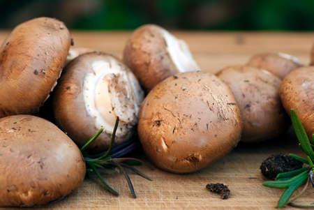 group of brown button mushrooms Stock fotó