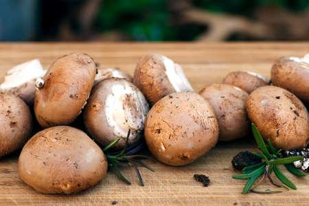 vegtables: bunch of brown mushrooms