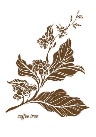 Tak van koffieboom met bladeren, bloemen en natuurlijke koffiebonen. Botanische contourtekening.