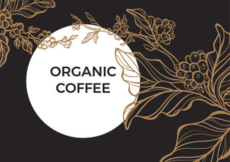 Coffee branch with leaves and natural coffee beans. Retro vintage style. Night, moon, garden. Copy space. Ilustração