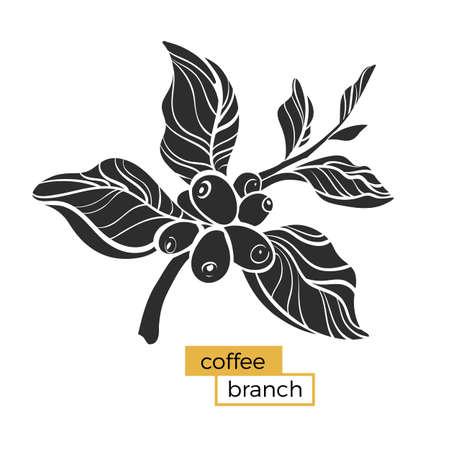 Zwarte tak van koffieboom met bladeren en natuurlijke koffiebonen. Silhouet, vorm. Botanische illustratie. Vectordiesymbool op witte achtergrond eps 10 wordt geïsoleerd