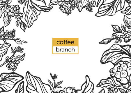 Template of black branch of coffee tree with leaves and natural coffee beans. Organic product. Silhouette, shape. Botanical illustration. Vector isolated on white background eps.10 Illustration