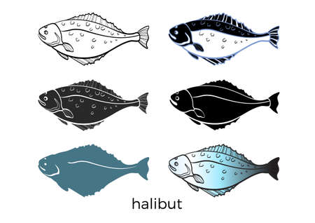 흰색 배경에 바다 물고기의 집합입니다. 넙치. 벡터 모양입니다. 해산물, 스케치, 실루엣입니다. 쉽게 편집 할 수 있도록 격리 및 그룹화 그림 eps.10 일러스트