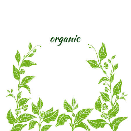 Green branch icon. 向量圖像