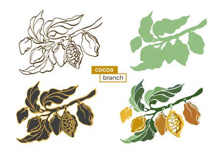 Ensemble de vecteur d'icônes de cacaoyer de couleur avec des feuilles et des haricots. Dessin botanique. Création de logo, silhouette. Symbole de style nature réaliste. Alimentation biologique. Illustration isolée sur fond blanc