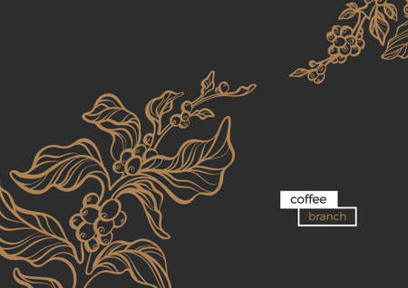 Vector floral template of realistic branch of coffee tree with leaf and natural coffee bean Organic drink, food Silhouette, sketch, art line botanical illustration isolated on black background eps.10