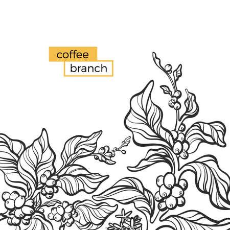 Invito vettoriale alla moda con elegante ramo di caffè, foglia, fagiolo, fiore. Carta della natura su sfondo bianco. Linea di arte floreale design. Modello vintage semplice. Art Deco. Illustrazione disegnata a mano Copia spazio