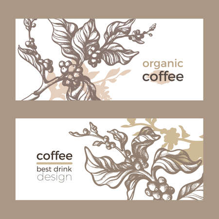 Vector sketch of coffee packaging. Nature realistic organic template with leaf, flower, bean . Art hand drawing floral illustration on white background. Botanical doodle label, poster, card. Eco food