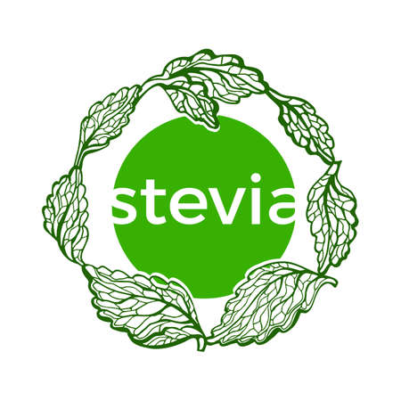 Vector symbol of stevia with branch, leaf. Fresh healthy organic food. Natural sweet green plant Herbal logo in circle Graphic art sketch illustration isolated on white background Hand draw bio wreath