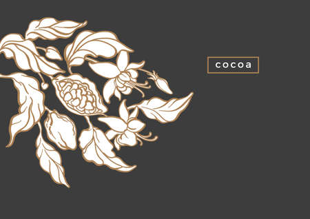 Vector template of cocoa tree, golden foliage, fruit, bean Nature art line design Floral illustration, green background Sweet sugar food, tropical chocolate, simple packing, exotic card, summer jungle