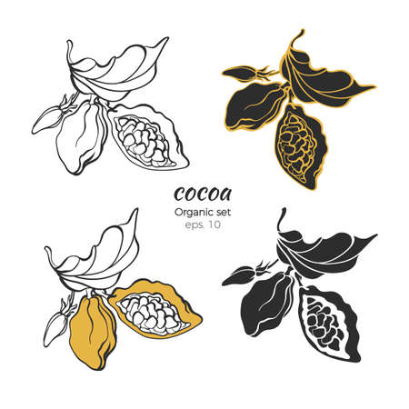 Vector set of cocoa logo. Nature leaves, bean, flower. Hand draw shape symbol, line art sketch sticker collection Natural print, floral stamp Organic tropical chocolate, sweet drink, aroma bio product Stock Illustratie