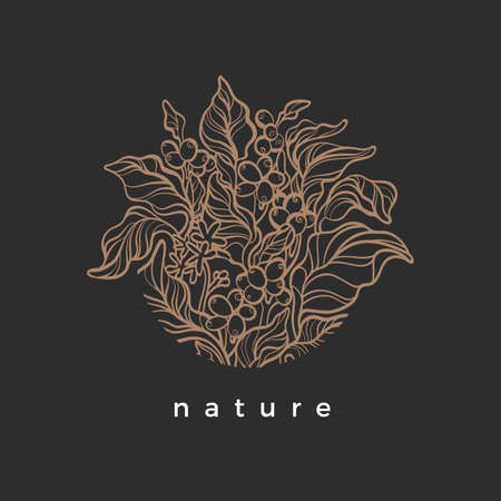 Vector nature symbol in circle Coffee branch with realistic leaf, flower, bean, grain Botanical art line design Elegant simple sign Organic graphic round frame Herbal hand drawn illustration Bio label