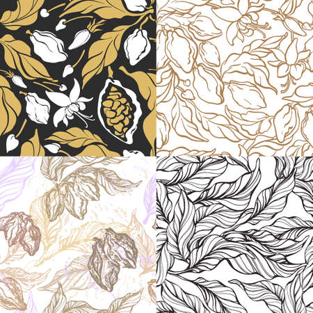 Set of seamless pattern. Cacao tree branch with leaf, bean. Vector botanical drawing print. Line art design. Realistic nature sketch. Organic sweet, food. Tropical illustration, white background
