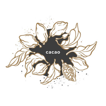 Vector organic chocolate label. Cacao leaves, bean in circle. Vegan sweet food, bio drink. Nature tropical symbol on white background. Raw product, graphic round print, sticker Art line illustration