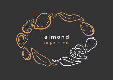 Almond. Natural nut. Packaging design in circle. Vector template. Organic emblem.  Botany art line leaves, bean Golden symbol Food logo on black background Tropical vintage label, card, sticker