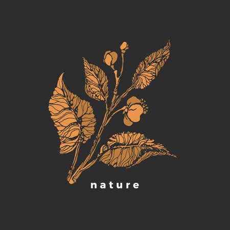 Tea sprout. Golden vector symbol. Sketch bush, bud, branch, leaf, flower. Botanical shape. Vintage elegant label. Natural aroma drink, organic food Tropical flora, summer garden