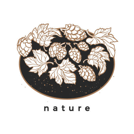 Vector nature template. Natural hop. Art white symbol. Bio beverage Print on black background Herbal cone, leaves, branch Simple design for beer card, pub Organic food Botany sticker, pattern, banner Иллюстрация