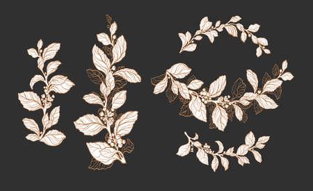 Mate tea plant. Vector pattern.  Arc floral set. Nature symbol, isolate group. Herbal design, aroma drink. Elegance bouquet, vintage border, hand drawn art line sketch Standard-Bild - 132022195