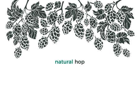 Set of hop. Vector botany border. Bio beverage. Art illustration, nature pattern on white background. Herbal cone, leaf, branch. Simple organic design for beer print, pub.